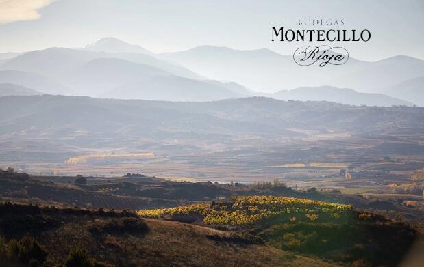 Visita a Bodegas Montecillo + cata degustación + aperitivo + botella de crianza