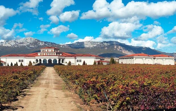 Empápate de la cultura del Rioja