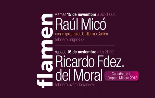 El mejor flamenco:  Flamenknet 2013