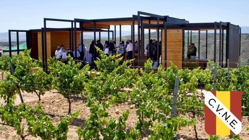 Visita + cata + botella de vino con opción a Picnic en el viñedo a 5 minutos de Logroño.