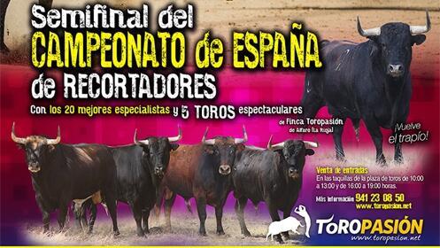 Semifinal del Campeonato de España de Recortadores en Logroño