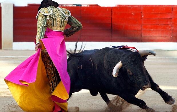 Entrada de Toros en Calahorra
