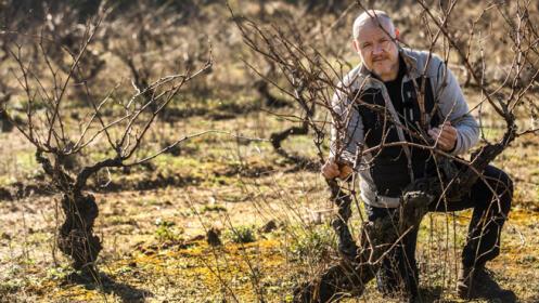Ignacio Gil Oribe, de Bodegas Mitarte (Labastida), lomejordelvinoderioja.com