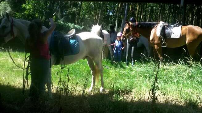 Disfruta de la naturaleza con tus hijos, paseo a caballo de 1 hora